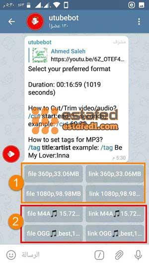 تحميل فيديو من يوتيوب عبر تليجرام